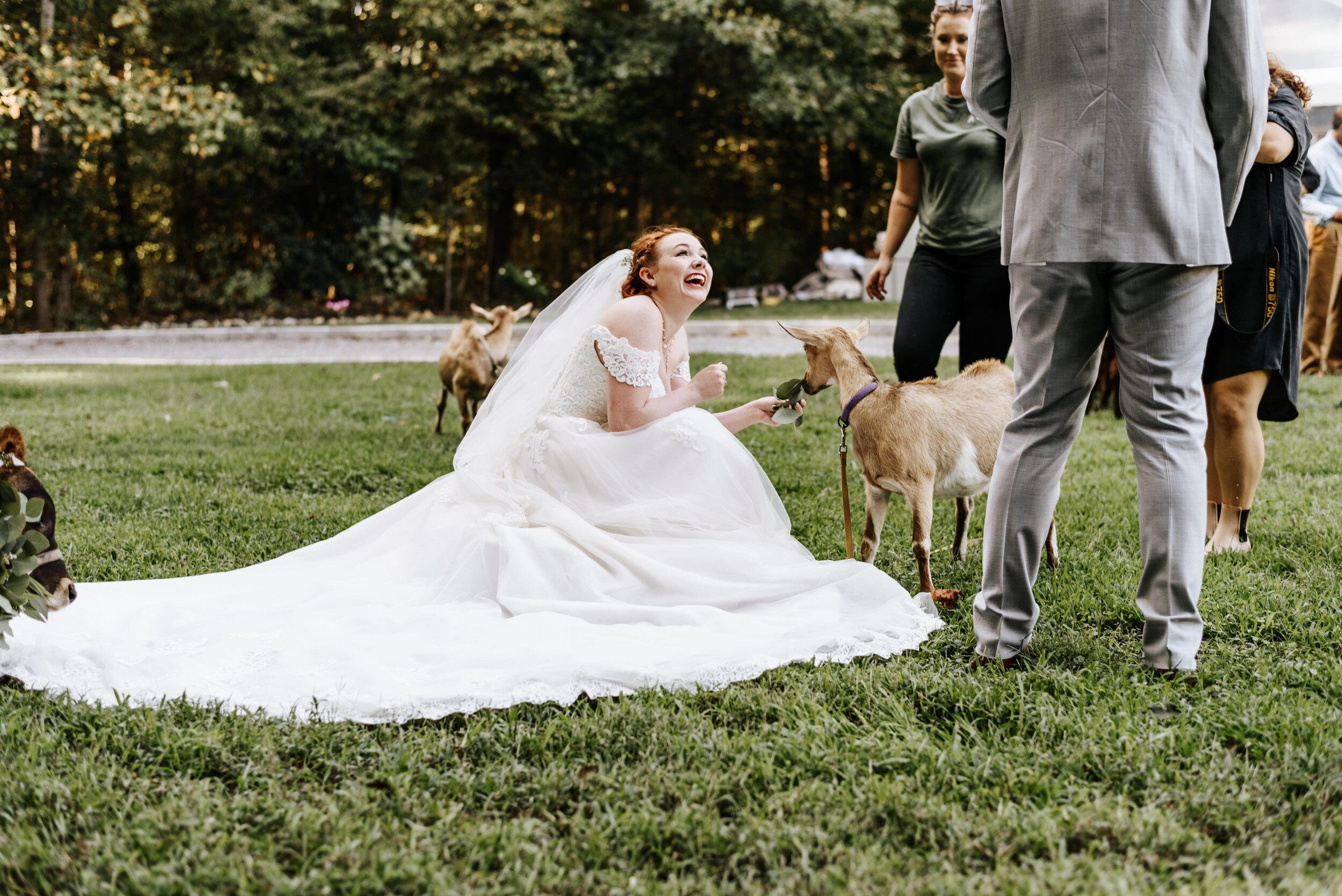 Rachel_David_Wedding_Richmond_Virginia_Photography_by_V_31.jpg
