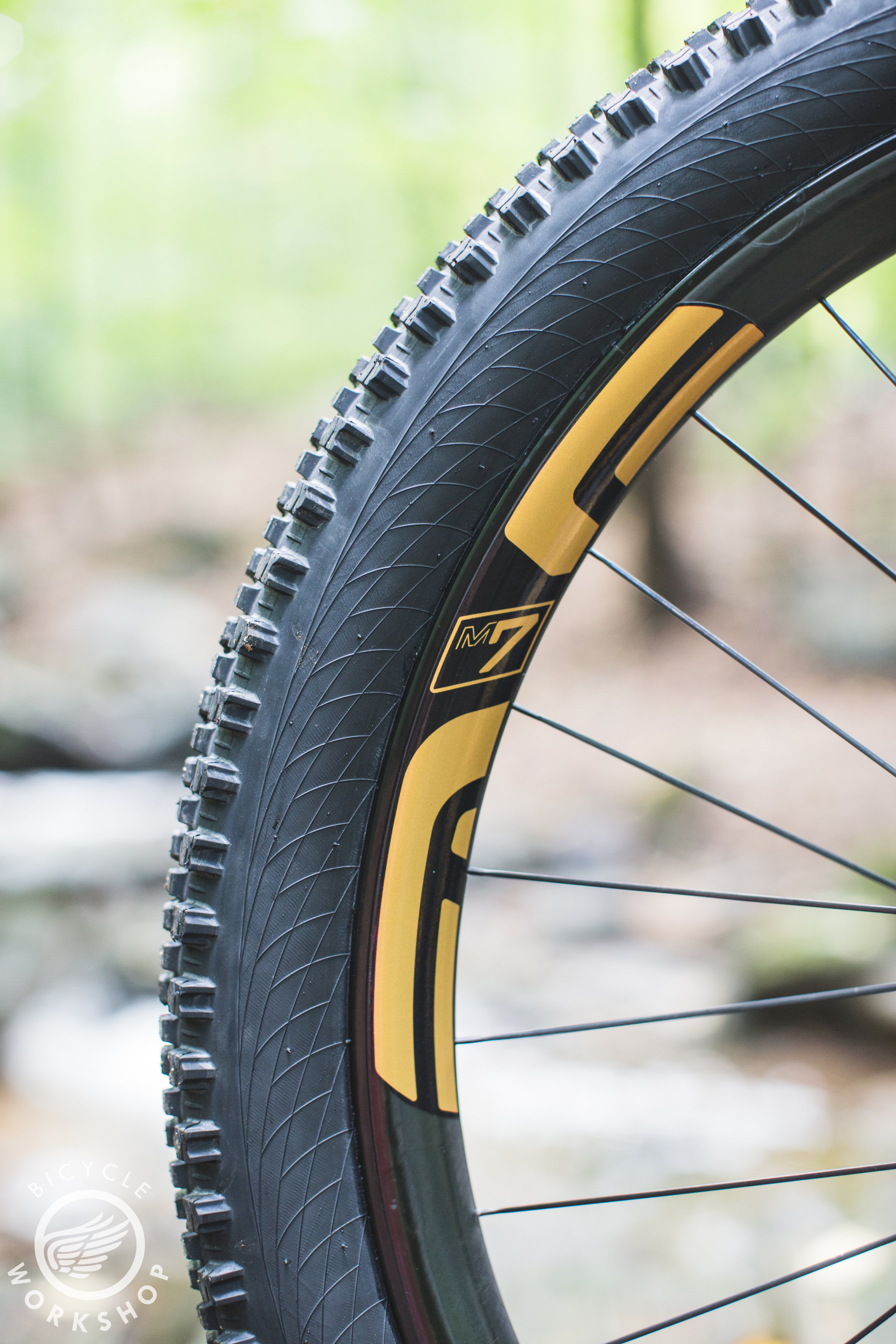 Enve 735 rims, not too stiff and very durable