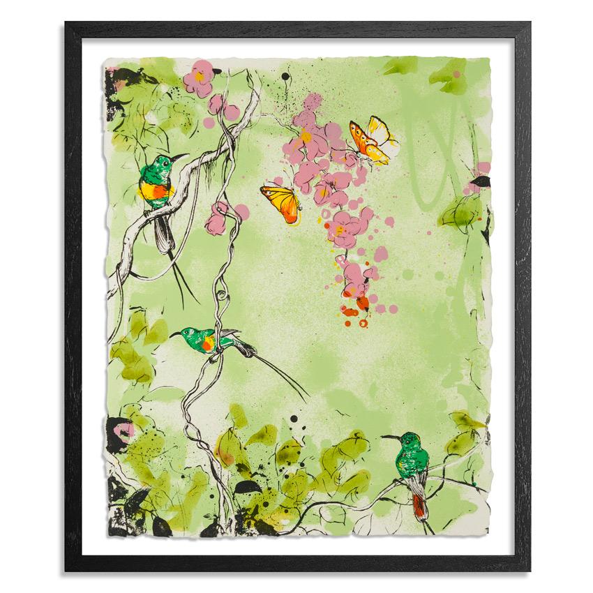 xenz-beautiful-sunbirds-green-1xrun-01 copy.jpg