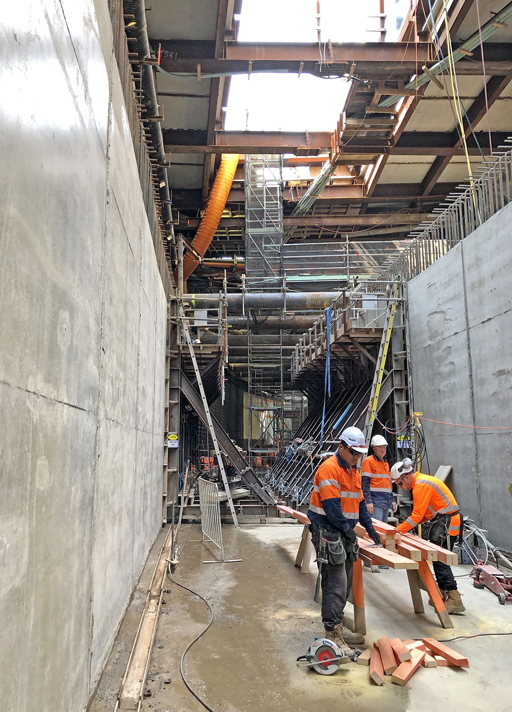 Albert St trench 7 March 2019
