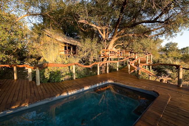 Africa_Picture_Safari_Botswana153.jpg