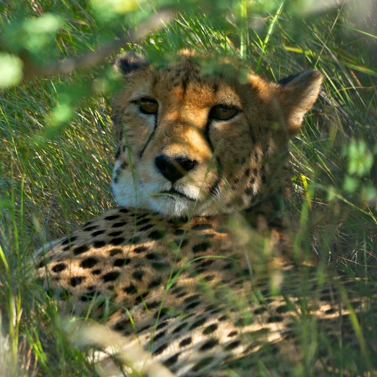 Africa_Photographic_Namibia__82.jpg