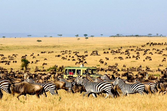 Africa_Photographic_Serengeti__39.jpg
