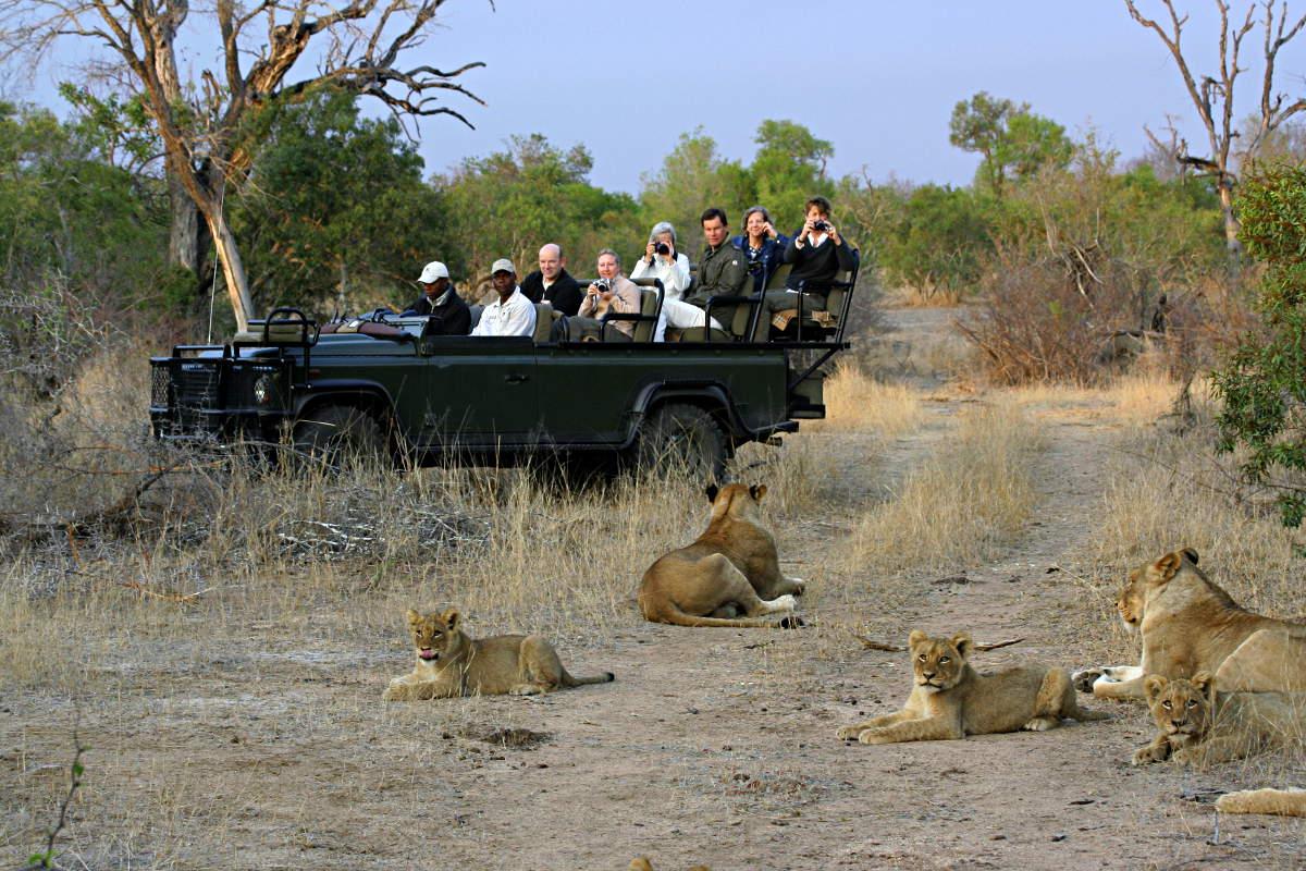 africa_photographic_safari_Chobe