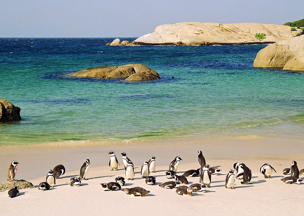 africa_photo_safari_South_Afrifca_cape_town_tours