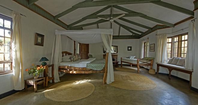 africa_photo_safari_Tanzania