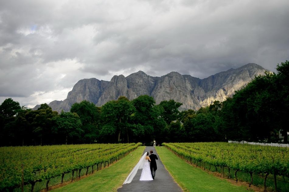 africa-picture-safari-winelands6a.jpg