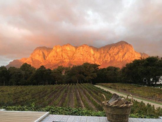 africa-picture-safari-winelands10.jpg