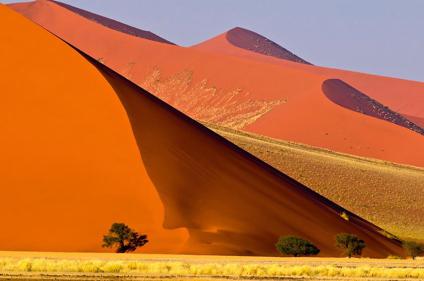 Africa_safari_Sosusvlei.jpg