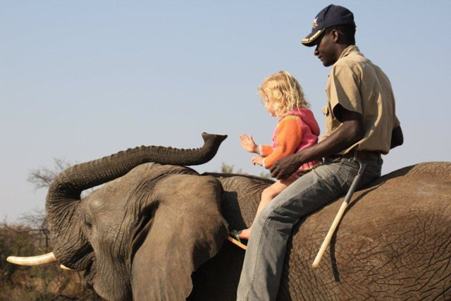 africa-photo-safar1_ elephant interaction5.jpg