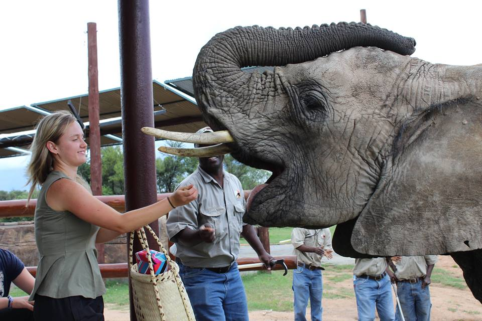africa-photo-safar1_ elephant interaction2.jpg
