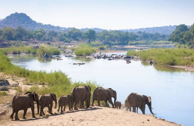 Elephants River Photo Camp5.jpg