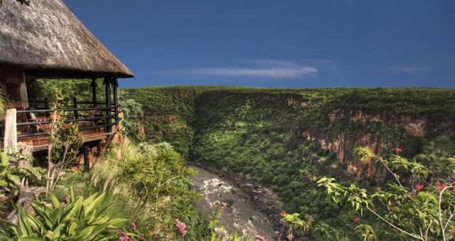 safari in africa2.jpg