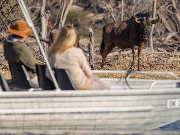 safari in africa makgadikgadi acc 9.jpg