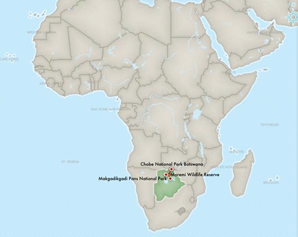 africa photo safari botswana