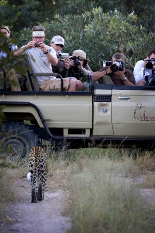 africa photo safari south Africa20022.jpg