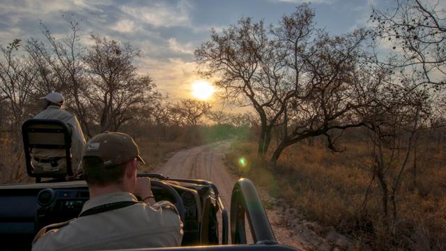 africa photo safari Kruger park28.jpeg