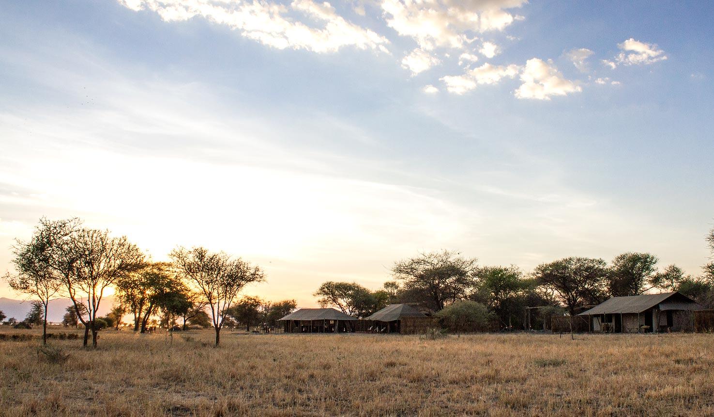 africa photo safari-tanzania115.jpg