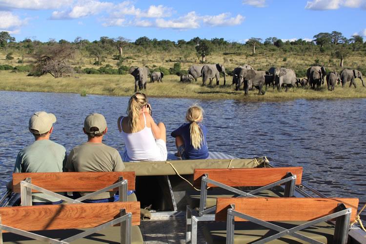 africa photo safari Chobe 8.jpg