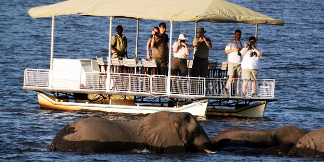 africa photo safari Botswana2.jpg