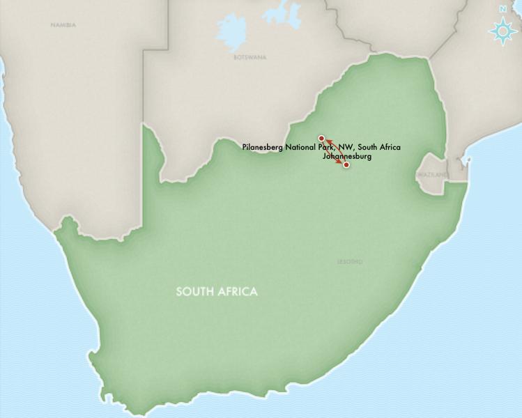 AFRICA SAFARI south africa.png