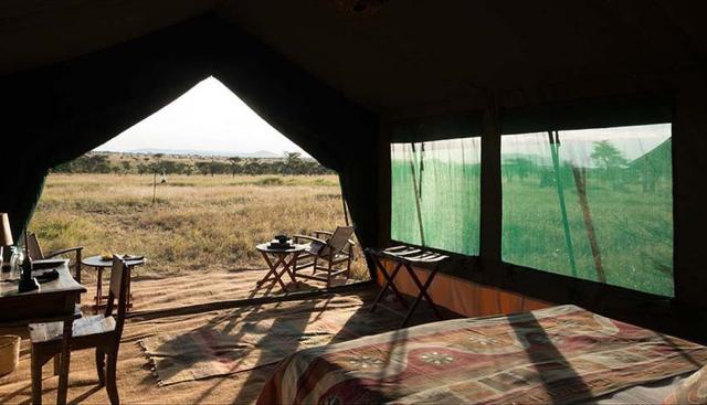 africa photo safari tanzania8.jpg