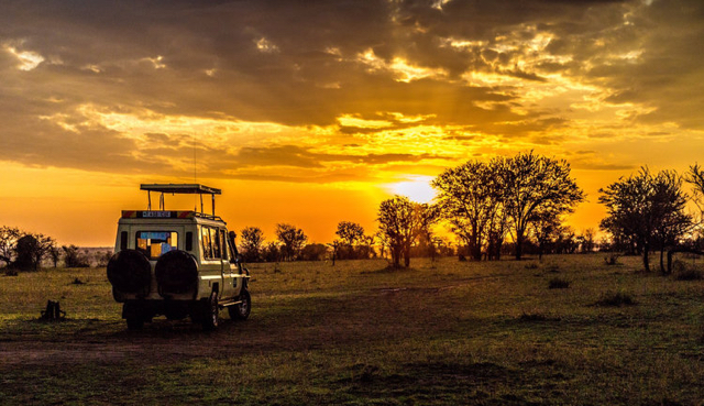 africa photo safari tanzania7.jpg