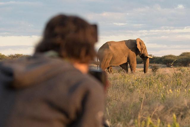 africa photo safari namibia-0526.jpg