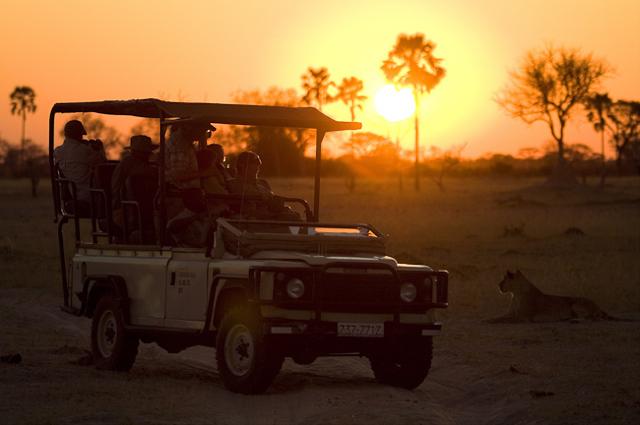 africa photo safari namibia-0517.jpg