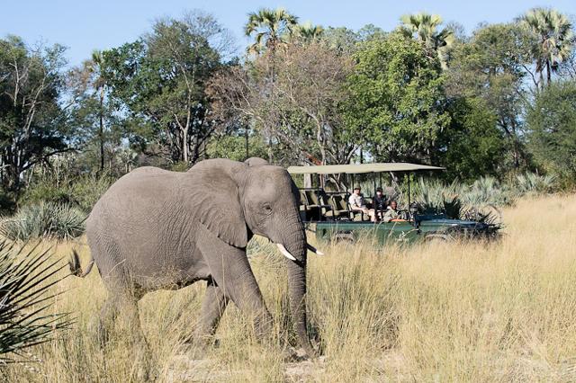 africa photo safari namibia-052.jpg