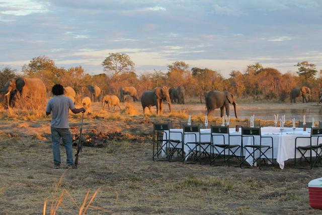 africa photo safari Zimbabwe-0121.jpg