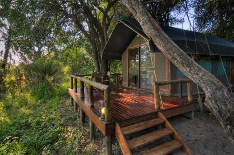 africa photo safari  botswana-1122.jpg