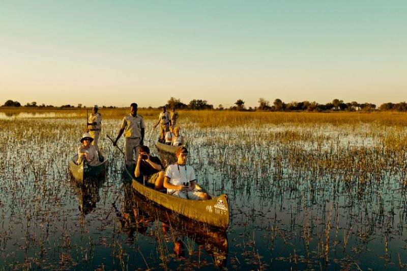 africa photo safari  botswana-1114.jpg