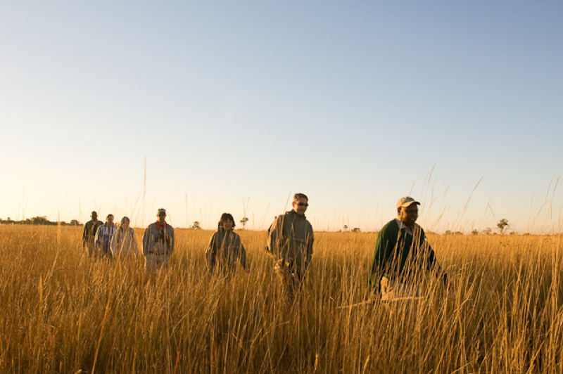 africa photo safari  botswana-117.jpg