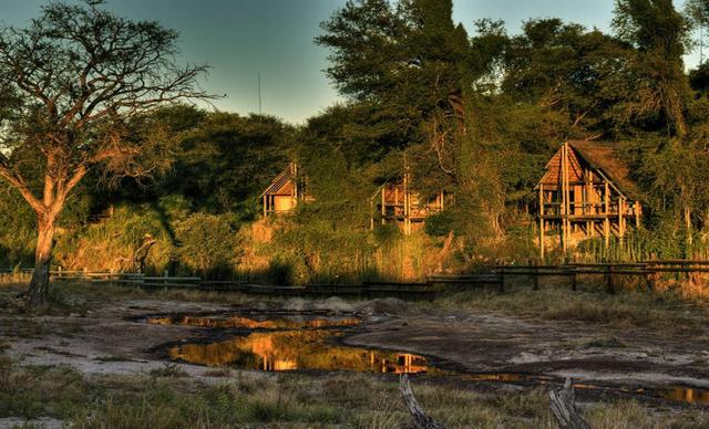 africa photo safari botswana-07G24.jpg