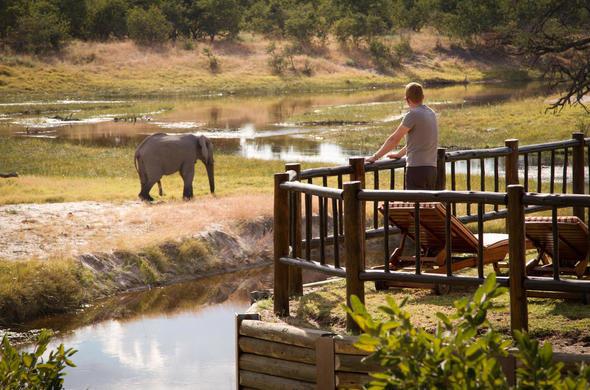 africa photo safari botswana-07G28.jpg