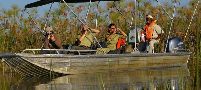 africa photo safari botswana-05g16.jpg