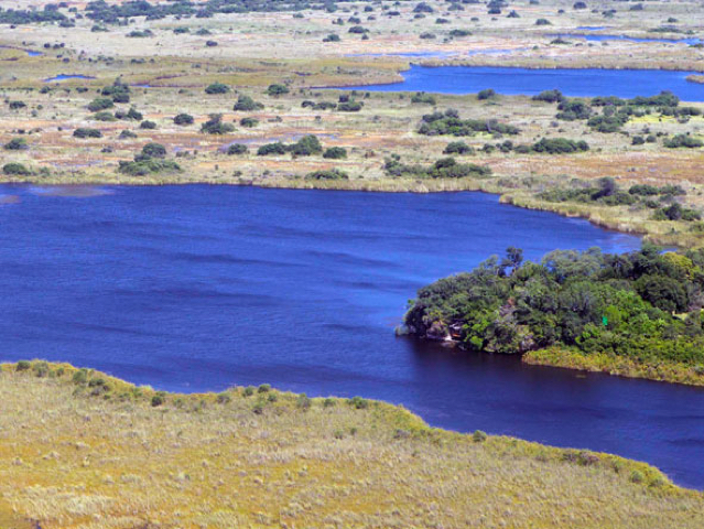 africa photo safari botswana-05g17.jpg