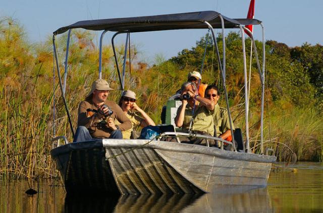 africa photo safari botswana-05g5.jpg