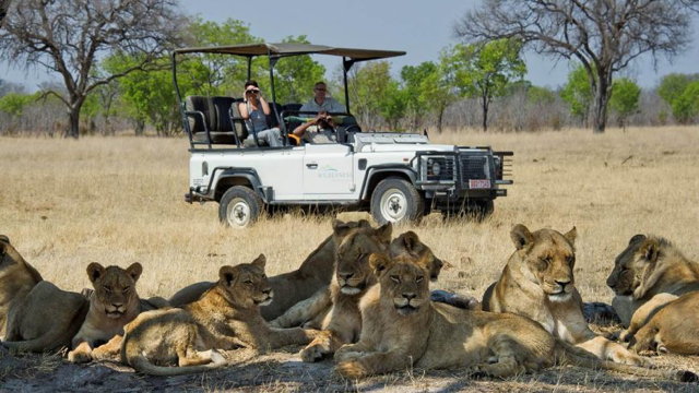 africa photo safari hwange-01119.jpg