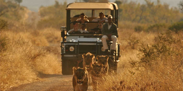 africa photo safari hwange-012.jpg