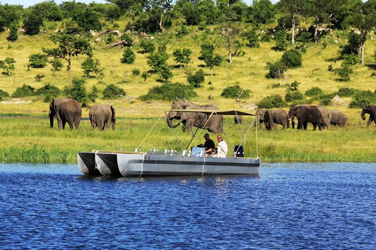 Africa_Photographic_Safari_CampChobe_17.jpg