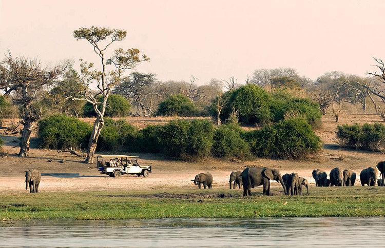 Africa_Photographic_Safari_CampChobe_4.jpg
