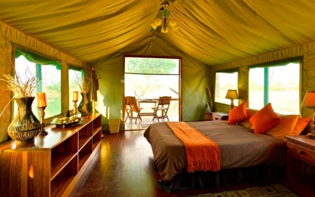africa safari Zimbabwe22.jpg