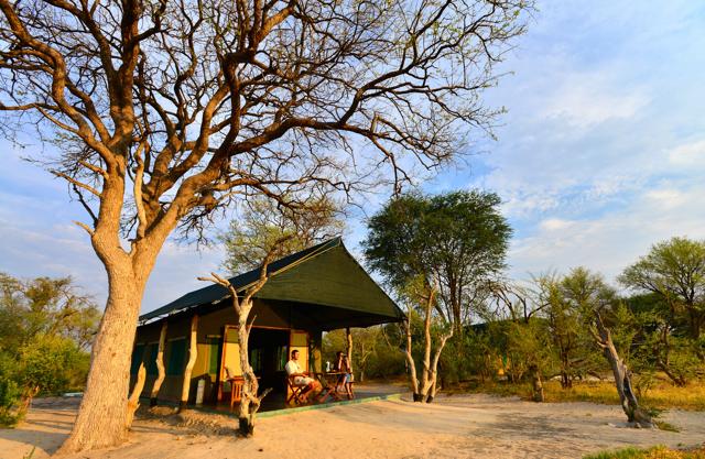 africa safari Zimbabwe20.jpg