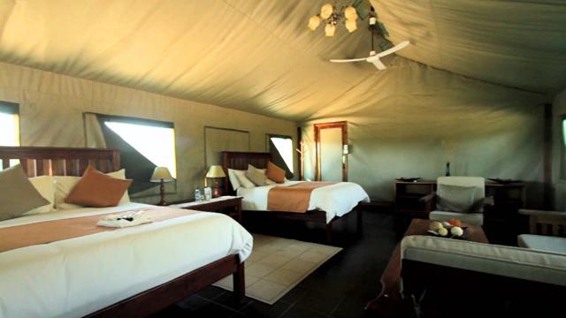 africa safari Zimbabwe9.jpg