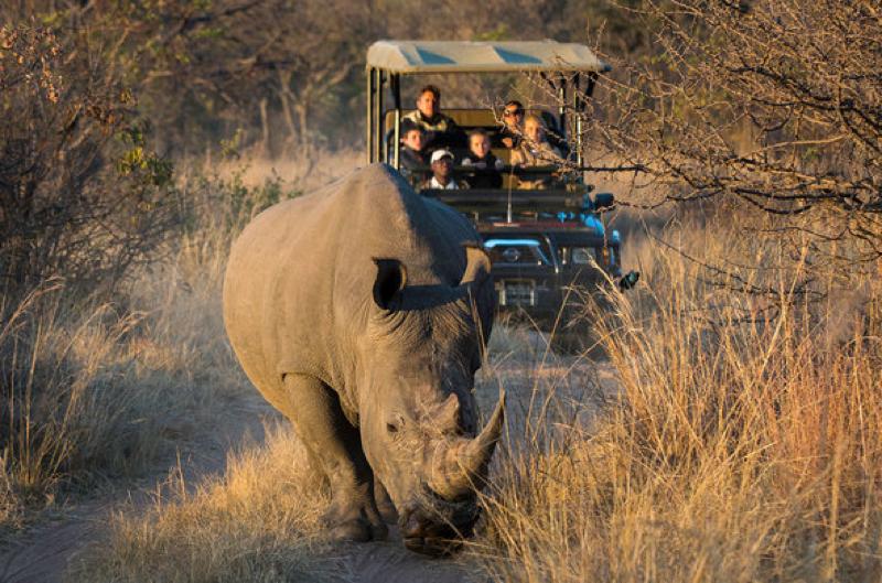 africa safari Victoria falls activities5.jpg