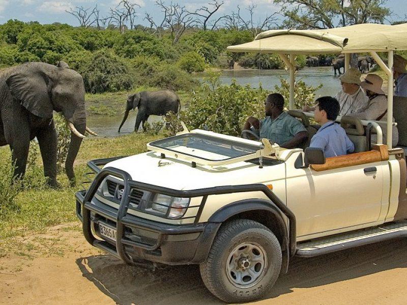 africa safari Victoria falls activities3.jpg