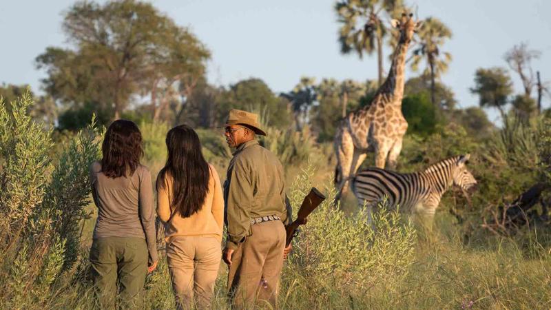 africa safari Victoria falls activities1.jpg