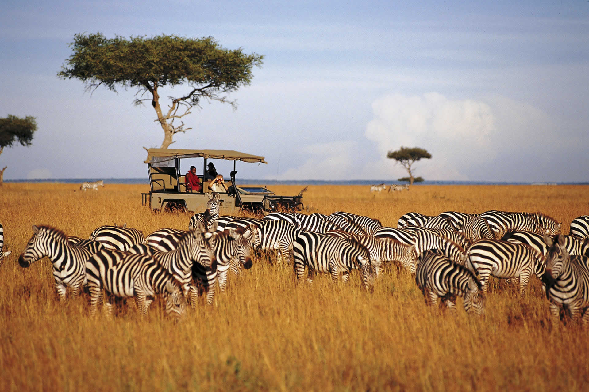 EXP_Gallery_migration_0003_Saruni-Mara-high-res-17.jpg